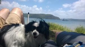 LOVE the beach!