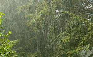 raining again...